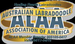 Healing Hearts Labradoodles ALAA International Logo - Copy (2)